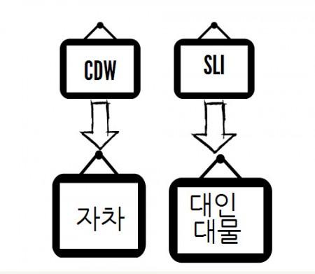 cdw-sli